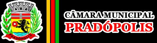Camara Municipal de Pradópolis
